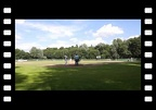 06/17/12 Solingen Alligators vs Dohren Wild Farmers Game2 (10-0)